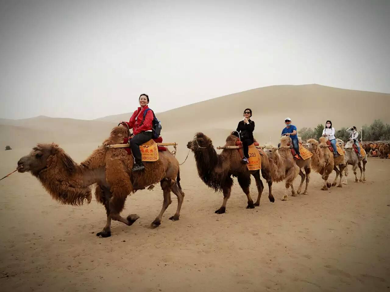 11 Days West China Adventure to Taklamakan desert